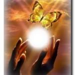 Легенда о бабочке. Притча