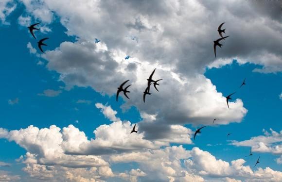 tam-za-oblakami1