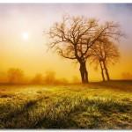 Время, природа и человек