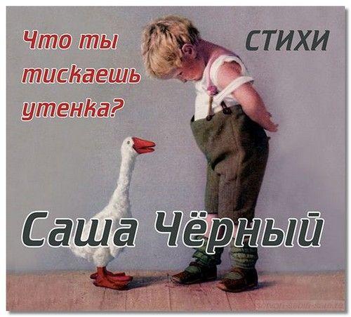 sasha_chernyj6