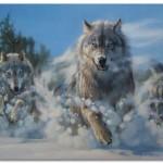Охота на волков. Случай из жизни