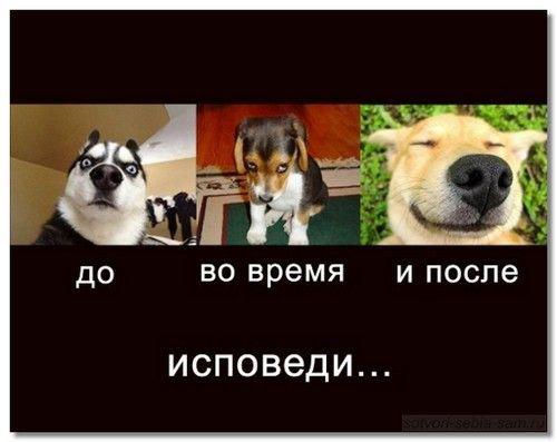 i_smeh_i_greh4