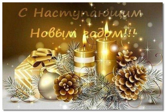 moipozdravlenija4