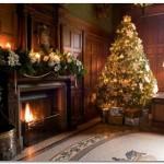 Похвала Рождественской елке