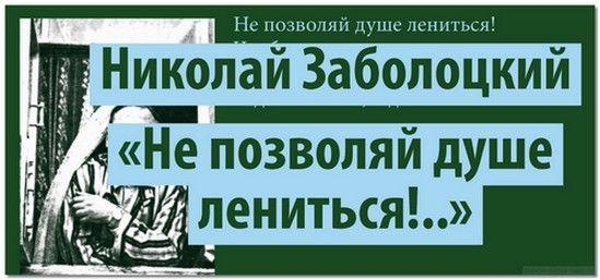nikolaj_zabolockij2