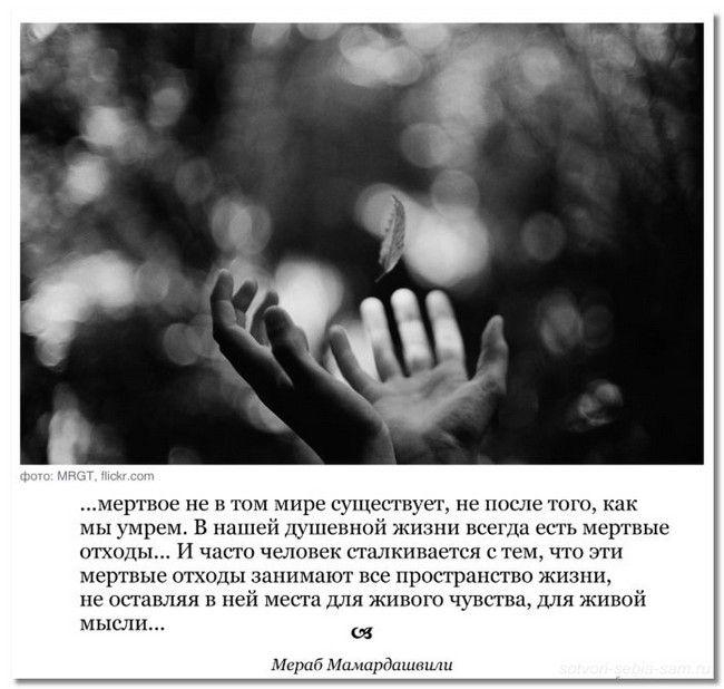 mudrye_mysli1